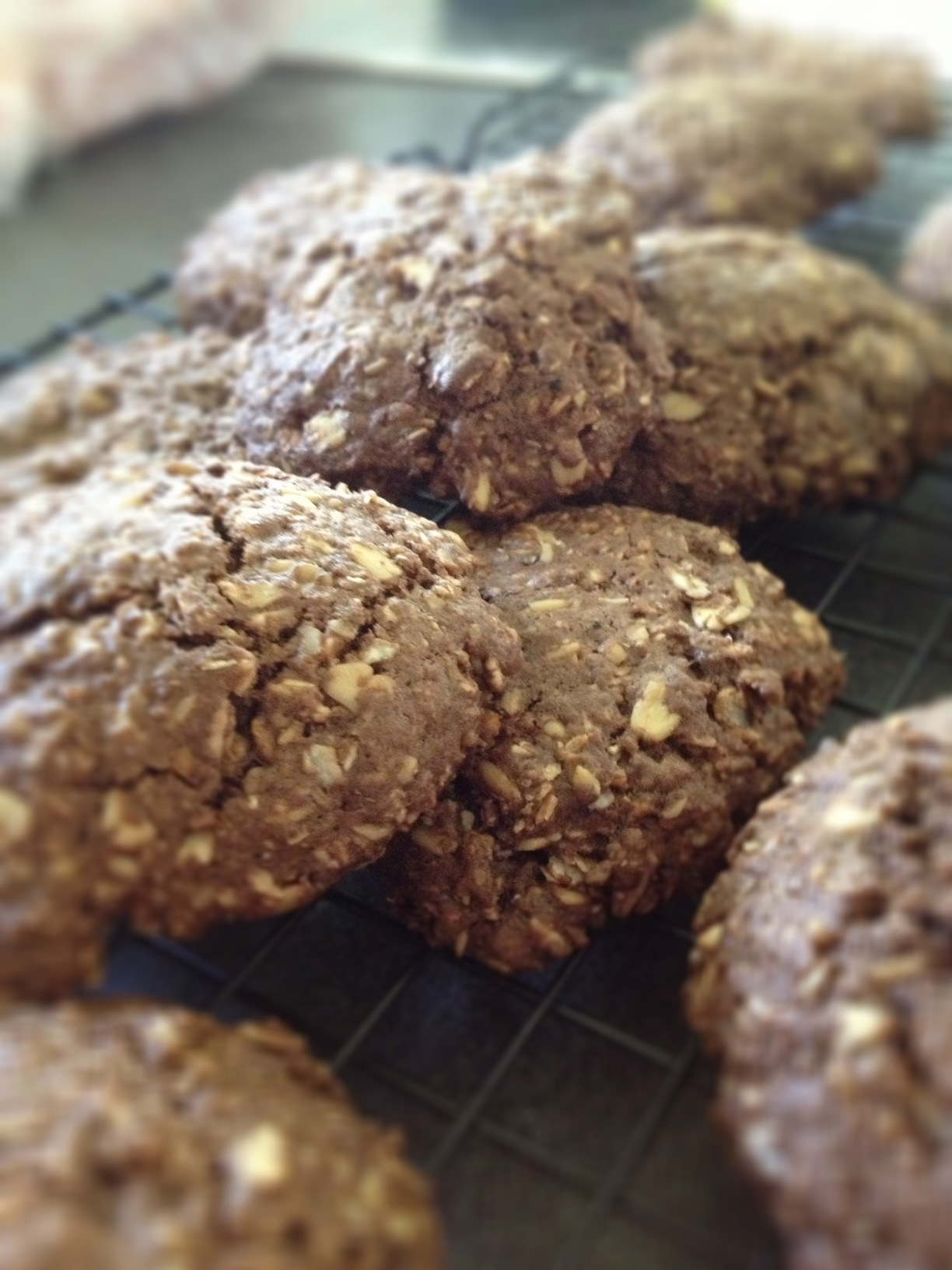 chocolate oat and walnut cookies