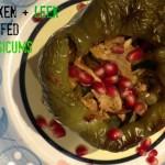 chicken and leek stuffed capsicums